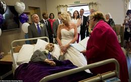 Người đàn ông đang hấp hối với ước mơ dang dở, những người lạ và nhân viên bệnh viện đã làm một chuyện không tưởng…