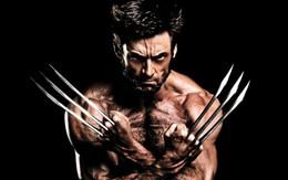 """Sẽ không có chuyện """"người sói"""" Hugh Jackman trở lại """"Avengers 4""""!"""