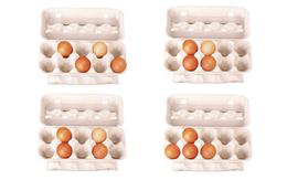 Bạn xếp trứng trong hộp như thế nào, điều đó sẽ nói lên nhiều điều về con người bạn