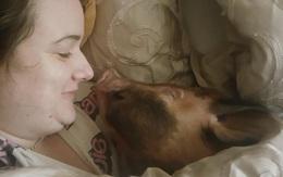 Đôi vợ chồng khác người hằng đêm ôm lợn với chồn hôi ngủ chung giường