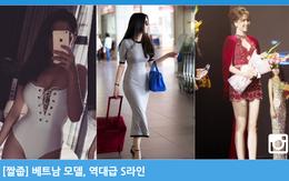 Ngọc Trinh bất ngờ được trang Dispatch Hàn Quốc hết lời khen ngợi