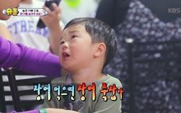 Nhìn cá, lươn bị bắt làm thịt, cậu bé đáng yêu này không kìm được nước mắt!