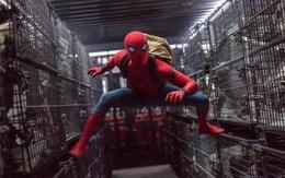 """Tại sao Spider-Man là """"con bò sữa"""" của Hollywood?"""