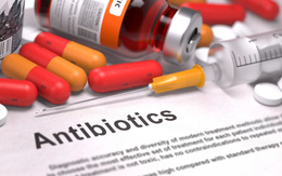 Vì sao sốt xuất huyết không được uống kháng sinh?