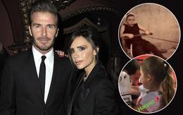 Vợ chồng Beckham gây tranh cãi vì con còn nhỏ đã cho tập gym, đấm bốc quá sức