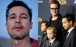 Brad Pitt vừa khóc vừa cầu xin các con tha thứ trong buổi trị liệu tâm lý