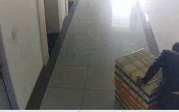 Clip: Camera ghi hình nghi phạm đẩy thùng xốp chứa thi thể nữ sinh ở hành lang chung cư Hà Đô