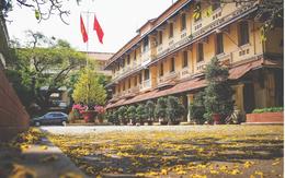 """Trường Đại học dễ thương, lãng mạn nhất Sài Gòn, nơi có """"ghế đá FA"""" dành cho người cô đơn nổi đình nổi đám một thời"""
