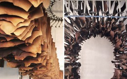 """""""Trồng"""" da từ collagen: Nỗ lực bảo vệ môi trường đáng ca ngợi của ngành thời trang"""
