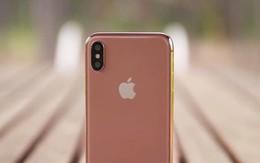 """Apple chuẩn bị tung ra phiên bản iPhone X với màu """"Blush Gold"""""""