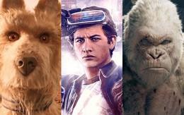 """Xem phim gì trong lúc lót dép hóng bom tấn """"Avengers: Infinity War"""" ra mắt?"""