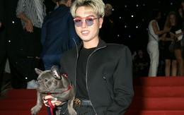 """Sau màn mượn chó của Hoà Minzy để đi thảm đỏ, Đức Phúc tiết lộ """"thú cưng"""" trong lần xuất hiện kế tiếp"""