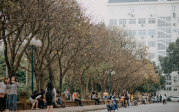 Sự thật phũ phàng tại con đường tình yêu đẹp nhất Hà Nội: Lá vàng rụng hết, người chật như nêm tranh chụp ảnh sống ảo