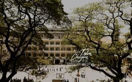 Ghé thăm Trần Chuyên - Ngôi trường THPT đẹp xinh như những bộ phim lãng mạn kiểu Pháp giữa lòng Sài Gòn