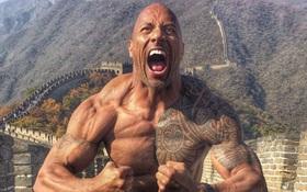 """""""Gã khổng lồ"""" The Rock sẽ trở lại võ đài để làm nên lịch sử"""
