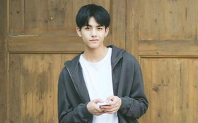 """Thêm một mỹ nam 17 tuổi gia nhập dự án """"Truy Tìm Kí Ức"""" của Vu Chính"""
