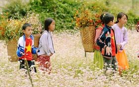 Dòng người lũ lượt kéo về thị trấn Đồng Văn để chụp ảnh với hoa tam giác mạch