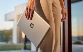 Laptop bây giờ ngoài hiệu năng tốt còn phải đẹp và thời thượng