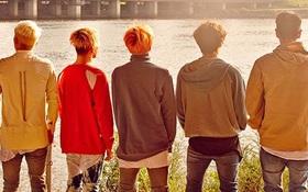 "Các boygroup ""tuổi trẻ tài cao"" của Kpop"