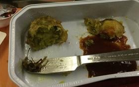 Ăn đến miếng cuối cùng mới kinh hoàng phát hiện ra gián chết trong suất ăn trên máy bay