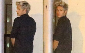 Niall (One Direction) bị bắt gặp đi vệ sinh giữa đường