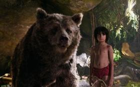 The Jungle Book - Quyến rũ, khốc liệt và đầy lôi cuốn
