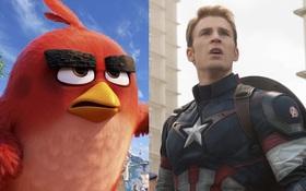 """""""The Angry Birds Movie"""" vượt mặt """"Captain America: Civil War"""" trên bảng xếp hạng doanh thu"""