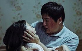 10 tác phẩm phim kinh dị hay nhất năm 2016