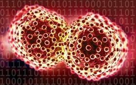 Tập đoàn công nghệ lớn nhất thế giới tự tin tuyên bố: 10 năm nữa, loài người được giải phóng khỏi ung thư