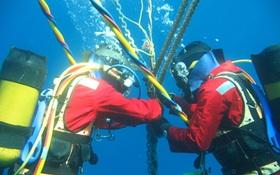 Cáp quang biển AAG bảo trì, internet quốc tế lại chậm