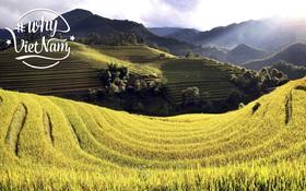 Bạn đã sẵn sàng trở thành Đại sứ du lịch với #WhyVietnam chưa?