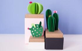 Gợi ý cách trang trí hộp quà thành chậu xương rồng cực yêu