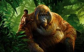 """Thành công của """"The Jungle Book"""" có khiến Warner Bros. lo ngại?"""