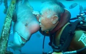 Tình bạn 25 năm đáng ngưỡng mộ của ông lão thợ lặn và con cá xấu xí