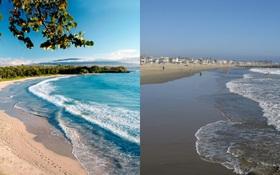 Vì sao có bãi biển nước trong vắt đẹp rực rỡ, biển khác lại đục ngầu?