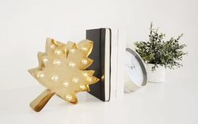 Tự làm đèn hình chiếc lá thật phong cách cho phòng ngủ trong mùa mới
