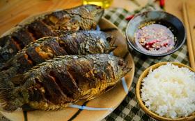 Tất tần tật mẹo vặt hữu ích với cá giúp bạn nhẹ việc hơn khi vào bếp