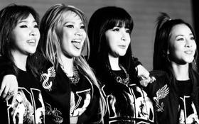 Người hâm mộ thế giới đồng loạt khóc lóc, réo gọi các thành viên sau tin 2NE1 tan rã