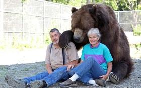 Đôi vợ chồng chung sống với gấu khổng lồ hơn 600kg dưới một mái nhà hàng chục năm qua