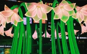 Giám đốc Sở Văn hóa chỉ đạo chỉnh sửa lại hoa ở Đài phun nước Bờ Hồ