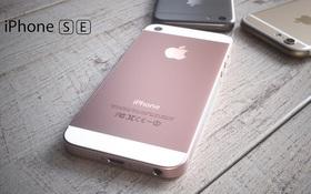 iPhone đồng loạt giảm giá mạnh khi iPhone SE ra mắt