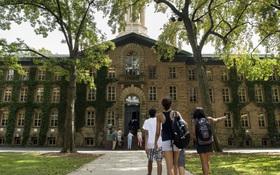 Chọn trường ở Mỹ: Cần lưu ý những yếu tố nào?