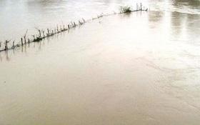 Rơi xuống ruộng ngập nước, nam sinh lớp 8 chết đuối thương tâm