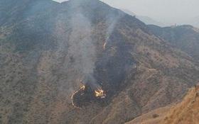Tìm thấy 36 thi thể sau vụ rơi máy bay kinh hoàng ở Pakistan