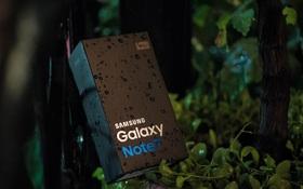 Samsung dự kiến chi 240 tỷ đồng đền bù vụ Galaxy Note7 tại Việt Nam