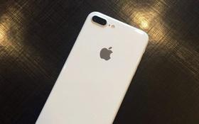 iPhone 7 và iPhone 7 Plus màu trắng bất ngờ xuất hiện đầy ấn tượng