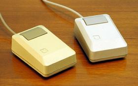 Có thể bạn không tin nhưng con chuột xấu xí này lại chính là tác phẩm của Steve Jobs