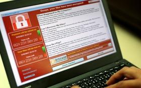 5 điều bạn cần làm ngay lập tức để phòng tránh mã độc WannaCry