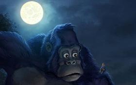 Những bộ phim hoạt hình thú vị về King Kong mà bạn chưa biết
