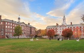 20 trường đại học sản sinh ra nhiều tỷ phú, triệu phú nhất thế giới